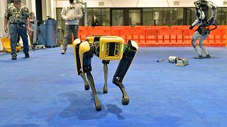 یکی از سگ رباتهای شرکت بوستون داینامیکز در نمایشگاه