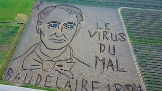 Un portrait de Baudelaire dans un champ en Italie