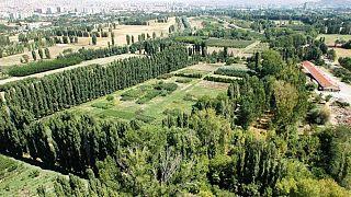 Atatürk Orman Çiftliği'nin eski bir görüntüsü