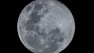صورة لما يعرف بالقمر الدودة