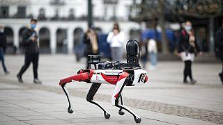 A Boston Dnyamics SPOT nevű robotkutyája
