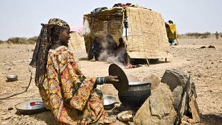 West Africa faces worsening food crisis: Experts