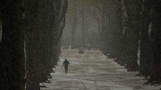 شخص يركض في الثلج