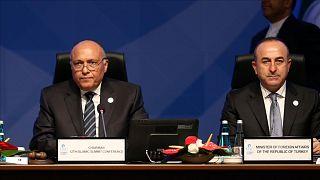 Mısır Dışişleri Bakanı Samih Şukri, Türkiye Dışişleri Bakanı Mevlüt Çavuşoğlu