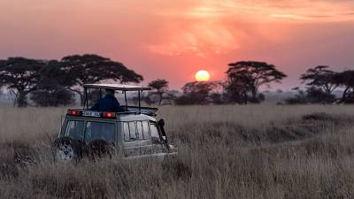 Africa is best known for being a safari hotspot. But where are the other options?