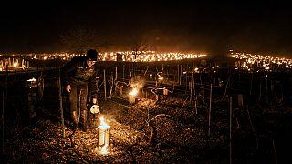 Un viticultor de la finca vinícola Daniel-Etienne Defaix enciende velas antiheladas en su viñedo cerca de Chablis, Borgoña, Francia, el 7 de abril de 2021.
