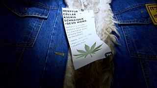 The cruelty-free biodegradable fur is made from hemp fibres.