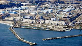 """""""Nell'oceano le acque radioattive di Fukushima"""""""