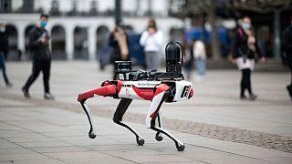 رُبات تامین کننده امنیت در هامبورگ آلمان