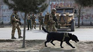 نیروهای بریتانیا در افغانستان
