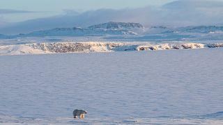 Európa is beszállna az Északi-sarkvidékért zajló versenybe