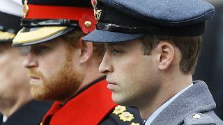 Prinz Harry und Prinz William 2015 in Uniform bei einer Zeremonie in London