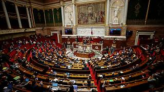 General view of the French parliament