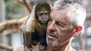 Köln'deki hayvanat bahçesinde Nadua isimli maymun