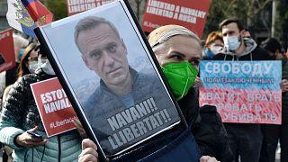 Navalny'e destek eylemlerinden bir kare / Arşiv