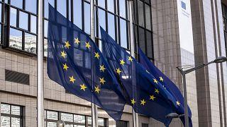 الاتحاد الأوروبي وواشنطن يقترحان تسوية لحل الأزمة السياسية في جورجيا