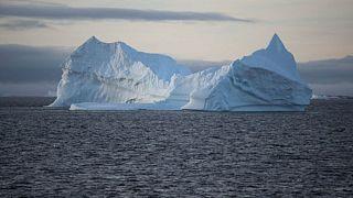 Antarktika'da kopmuş buzul parçalarından biri