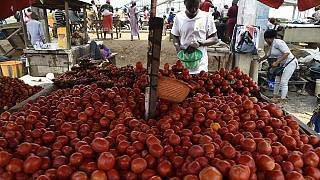 Nigerians lament rising cost of living as food prices soar, inflation at 4-year high