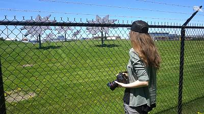 Film director Julia Barnes investigates solar panels