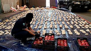 محموله انار حاوی مواد مخدر متعلق به کشور لبنان که در عربستان کشف شد