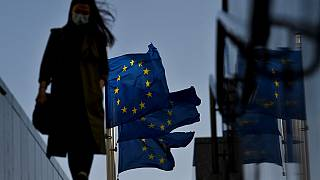 A woma walks in front of the European Union's flag in the EU headquarters district in Brussels
