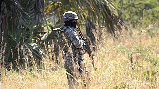La SADC envisage un soutien militaire au Mozambique face aux rebelles