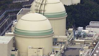 Takahama nükleer reaktörü