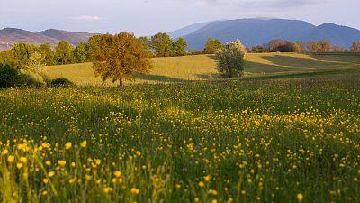 Central Apennines