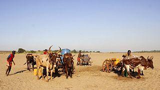 """L'ONU s'inquiète d'un """"désastre humanitaire"""" à Madagascar"""