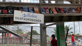 """Biblioteca """"Despadronizada"""""""