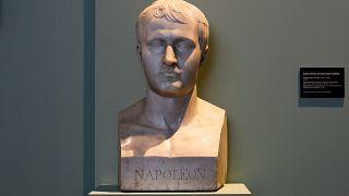 علماء ومؤرخون يفنّدون نظرية مقتل نابوليون بالسمّ