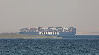The Ever Given cargo ship anchored in Egypt's Great Bitter Lake in March.