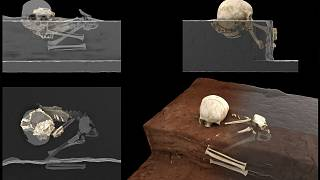 """This handout computer-generated image released on May 4, 2021 by the CNRS-University of Bordeaux, shows the remains of a 3-year-old child named by the scientists """"Mtoto"""""""