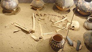 بقایای انسان دفن شده در موزه سوئد