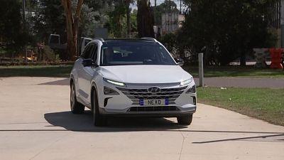 Car from Australian Capital Territory's new fleet of hydrogen-fuelled vehicles