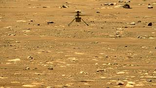 Ingenuity, le petit hélicoptère de la Nasa, lors de son second vol au-dessus de la surface de Mars, le 22 avril 2021
