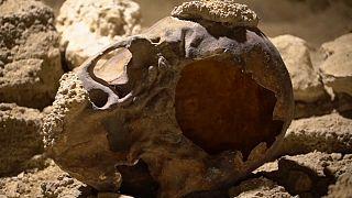 Neandertaler - ein besonderer Fund in Italien