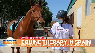 Horse and rider in equine therapy session in Spain.