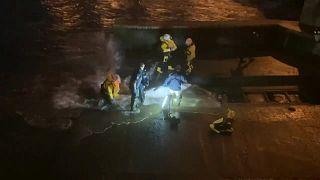 رجال الإنقاذ يحاولون تحرير حوت صغير جنح على ضفاف نهر تيمز بضاحية لندن.