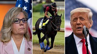 Liz Cheney - Medina Spirit - Donald Trump / egy pártküzdelem alacsony nívón