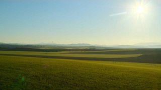 Un paisaje andaluz
