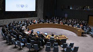BM Güvenlik Konseyi toplantısı (Arşiv)