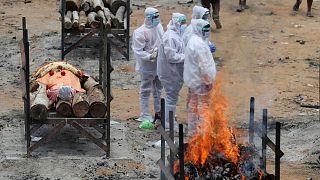کووید-۱۹ در هند همچنان قربانی میگیرد