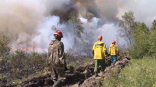 Incendios en a regi´n central y siberiana de Rusia