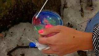 Καλλιέργεια βακτηρίων σε τρυβλίο Πέτρι