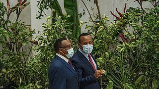 Ethiopie : Abiy Ahmed veut planter six milliards d'arbres en 2021