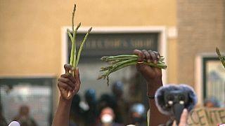 Arbeitsmigranten protestieren in Italien