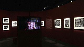 """""""Amazonia"""", une exposition sur l'avenir de la forêt brésilienne"""