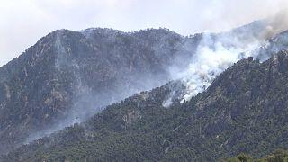 Premiers grands incendies de l'année en Grèce, des habitants évacués