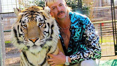 """Insolite : la justice américaine saisit les animaux du """"Tiger King"""""""